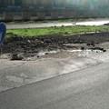 Buche e asfalto divelto