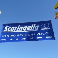 Scaringella JPG