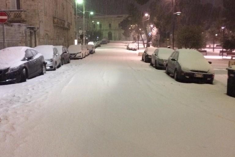 Neve 2019 (Foto Grazia Ippedico)