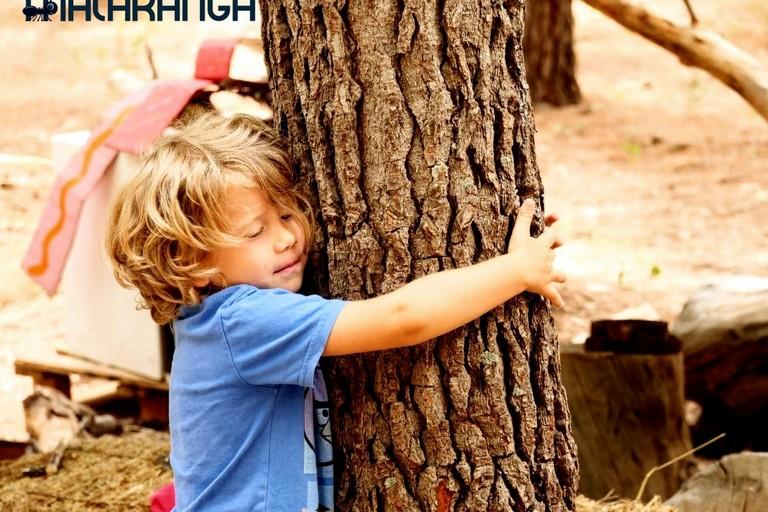 Bambini e alberi