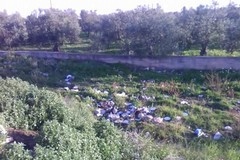 Parco Mennea, dopo 3 mesi è già un letamaio