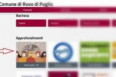 """Attivo sul sito del Comune """"Info Covid 19"""", portale di informazioni sulla pandemia"""