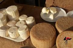 Sagra del Fungo Cardoncello: sequestrati 350 chili di funghi e prodotti caseari