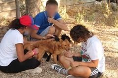 Emotività e socialità, i cani del canile di Ruvo incontrano i minori ospiti di Arcadia