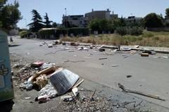 Pulisce l'aiuola comunale dai rifiuti, la Polizia locale lo multa