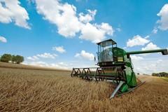 Lavoro, Coldiretti: «Senza voucher persi 1000 posti in agricoltura»