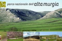 """""""Biodiversità Resilienza e Cambiamenti Climatici"""" , al Parco si discute di corretta gestione del Capitale Natura"""
