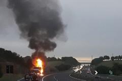 Bus in fiamme sulla strada verso Roma, illesi i ruvesi a bordo