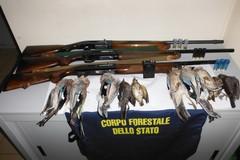 Caccia illegale a Ruvo, sequestro di fucili e tre denunciati
