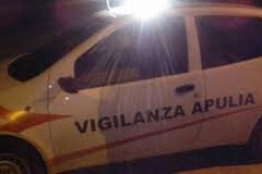 Forzano la finestra di una villa sulla Ruvo-Palombaio: ladri messi in fuga