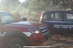 Tre incendi tra Ruvo di Puglia e Calendano
