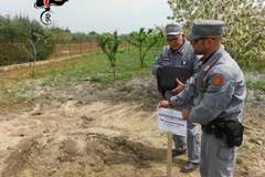 Scaricava i fanghi dell'autolavaggio in un terreno agricolo, denunciato