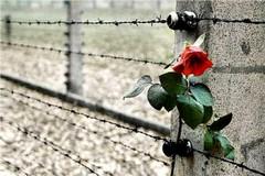 Il mese della Memoria, per non dimenticare