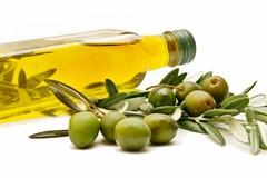 La mostra itinerante sull'oliva e l'olio fa tappa  a Ruvo di Puglia