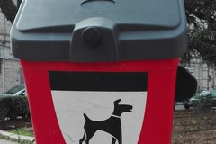 Piazze e giardini pubblici, istallati i contenitori per le deiezioni canine