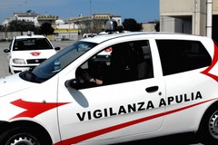 La vigilanza Apulia ritrova escavatore rubato