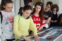 Alternanza scuola - lavoro, il liceo Tedone tra le migliori scuole pugliesi