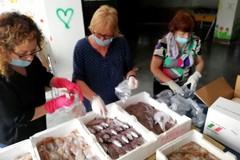 Sequestrati 65 kg di pesce, saranno donati alle famiglie in difficoltà di Ruvo di Puglia