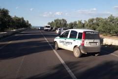 Auto fuori strada, feriti cinque giovani ruvesi