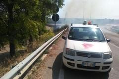 Incendio sulla provinciale Ruvo-Calendano