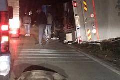 Branco di cinghiali provoca incidente, CasAmbulanti: «Siamo abbandonati dalle istituzioni»