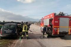 """Stanno bene i tre atleti dalla """"Michele Caroli"""" coinvolti nell'incidente stradale ad Altamura"""