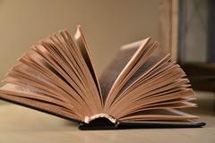 """Anche a Ruvo di Puglia si celebra la """"Festa della lettura e dei lettori"""""""