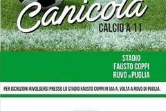 """Torna la """"Canicola"""": allora stadio di Rvuo si riscopre il gusto del calcio"""