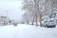 Allerta neve, la polizia municipale presente anche via Facebook