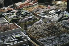 Fermo pesca, boom di importazioni dall'estero
