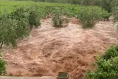 Alluvione a Ruvo di Puglia, Chieco chiede aiuto a Emiliano per riparare i danni
