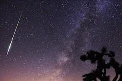 """Torna a Ruvo di Puglia """"La notte delle stelle innamorate"""""""