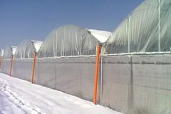Allerta neve, carburante agevolato per riscaldare le serre
