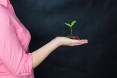 AgriCultura, progetto contro l'esclusione sociale dei giovani. L'avviso pubblico
