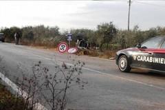 """Colonna: """"Urgente sbloccare i fondi per la manutenzione della rete stradale di province e città metropolitana"""""""