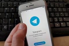 Giornali e libri pirata, salgono a 114 i canali bloccati su Telegram