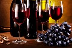 I vini di Puglia vanno in tour a novembre: tutte le aziende partecipanti