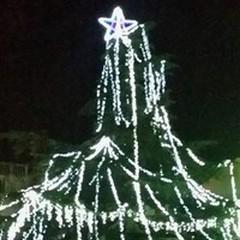 La luce dell'albero in piazza Bovio dà lo start allo sport