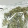 Sorpreso con 200 grammi di marijuana: arrestato 26enne
