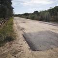 Addio alle buche, oltre 1 milione di euro per i lavori sul manto stradale