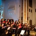 """Domani il concerto  """"Cantando sotto le Stelle """" dedicato alle 23 vittime della Andria-Corato"""