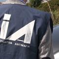 «I Mercante-Diomede hanno articolazioni operative anche a Ruvo»