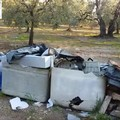 «Discarica abusiva nei pressi del cimitero di Ruvo di Puglia»
