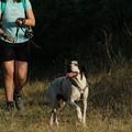 A spasso con i cani del canile, secondo Dog Trekking a Ruvo di Puglia