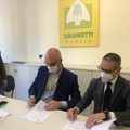 Economia circolare, in Puglia accordo per energia agricola rinnovabile
