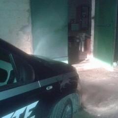 Assaltano una casa di campagna, la Metronotte sventa il furto