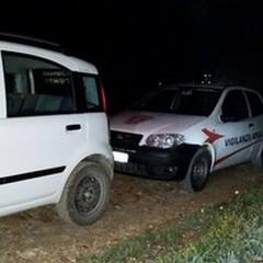 Vigilanza Apulia sventa furto di olive