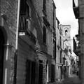 Più forte è la vita, passeggiata itinerante dedicata a Biagina Marniti