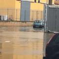 Dopo il caldo in arrivo la pioggia a Ruvo e in tutta la Puglia
