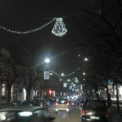 Luminarie per le strade di Ruvo, D'Ingeo: «Un sentito ringraziamento ai commercianti»